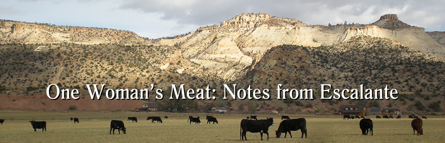 Jana Richman One Woman's Meat: Notes from Escalante